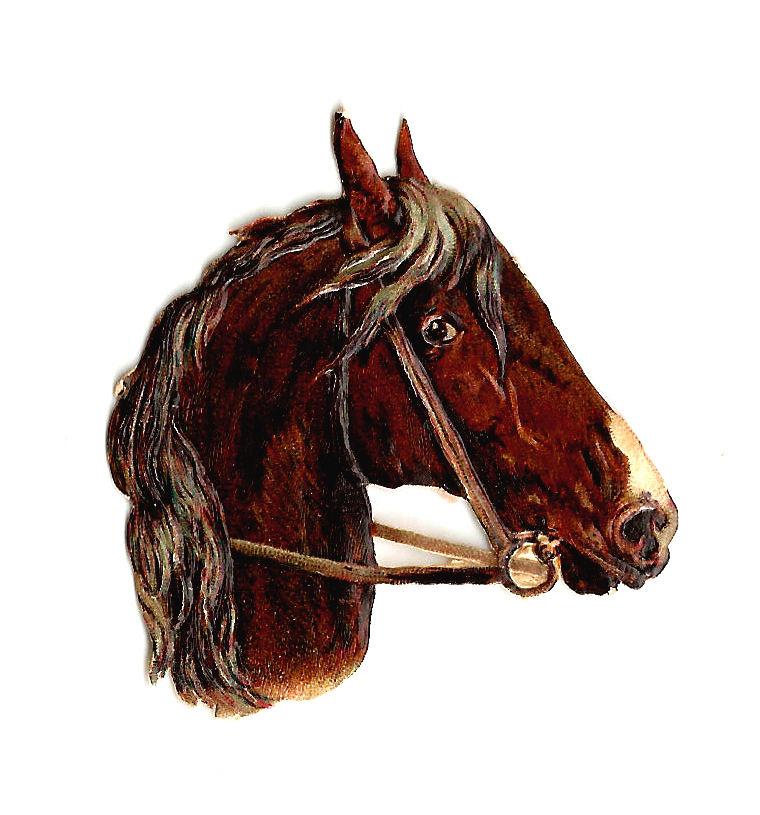 Vintage Horse Paintings