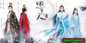 Tư Mỹ Nhân - Song Of Phoenix Zhang Xinyu