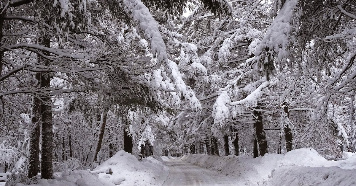 Joe's Retirement Blog: Pure As The Driven Snow, Old