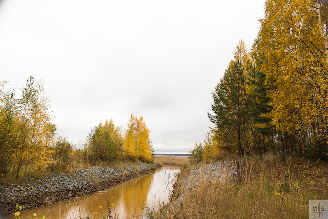 syksyn kauneus, luonto, suomen luonto, lenkkeily,  syksy
