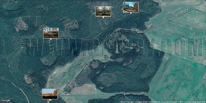 Спутниковая карта Налибокской пущи. Дзержиново-Петриловичи