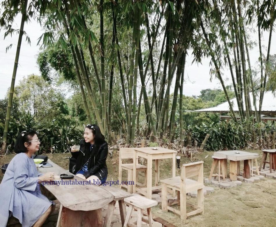 Kursi Kursi Panjang Dari Kayulilingi Pohon Pohon Pinus Ataupun Rumah Rumah Kayu Dimana Pengunjung Bisa Santai Dan Ngobrol Ngobrol Di Tengah Hutan