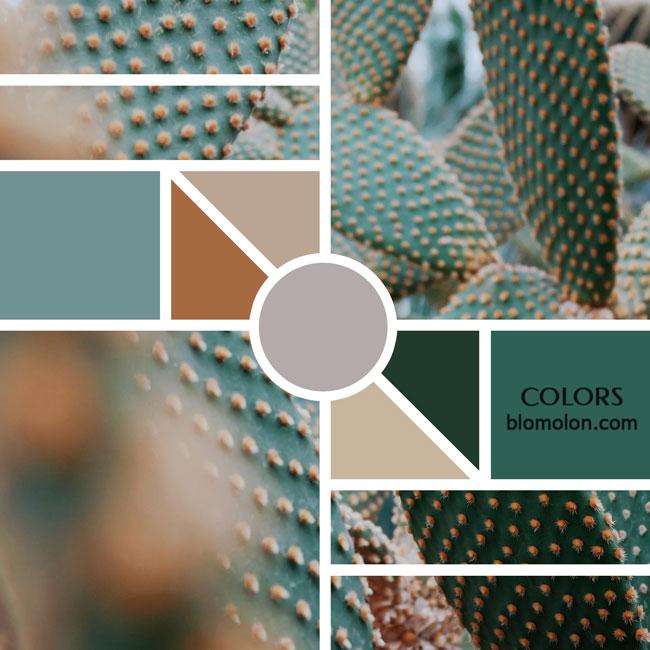 variedad_en_color_moodboards_11