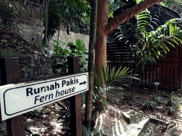 Ahad di KL Forest Eco Park