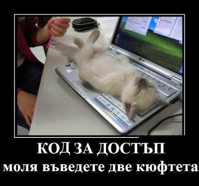 Код за достъп: Моля въведете две кюфтета Смях - смешни gifs картинки и снимки с надписи, забавни клипчета и яки демотиватори