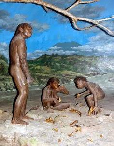 Dulu pada waktu Sekolah Menengah Pertama saya masih ingat betul pelajaran sejarah yang mengupas perihal manusi Museum Purbakala Sangiran, Tempat Belajar Manusia Purba