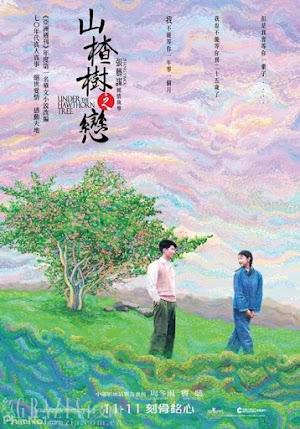 Phim Chuyện Tình Cây Sơn Tra - Under The Hawthorn Tree (2010)