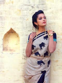 Sheena Chohan In Saree