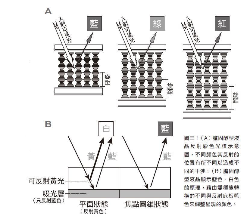 科學月刊: 研發電子書─膽固醇型液晶應用