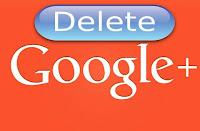Удаление профиля с expanse.ws, Pikabu, Google+