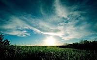 campo paisaje