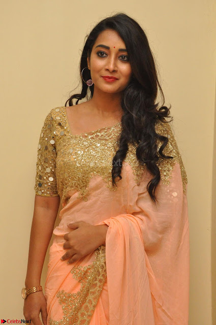Bhanu Shri looks stunning in Beig Saree choli at Kalamandir Foundation 7th anniversary Celebrations ~  Actress Galleries 005.JPG