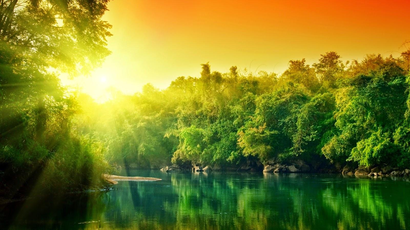 Achtergrond met groene rivier bij zonsondergang