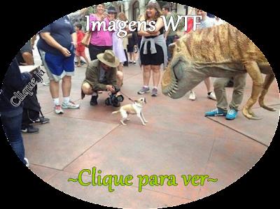http://www.calangodocerrado.net/2016/08/imagens-wtf-161.html