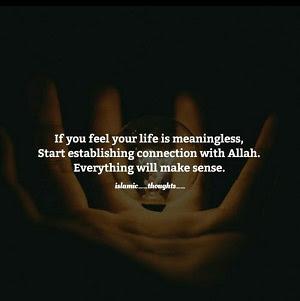 Si vous sentez que votre vie n'a pas de sens, commencez à établir une connexion avec Allah. Tout fera sens.