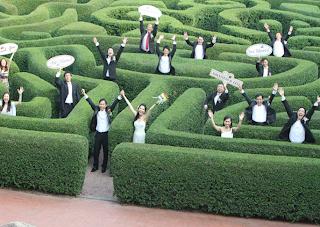 групповая свадебная фотография