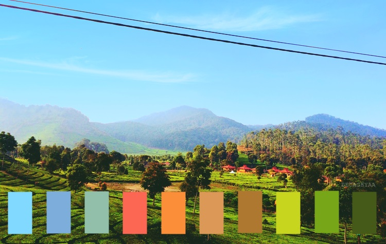 color palette, ciwidey bandung