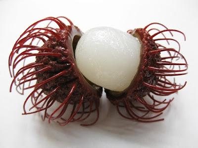 rambutan, manfaat rambutan, manfaat rambutan untuk kesehatan, kandungan gizi rambutan, kandungan nutrisi rambutan,