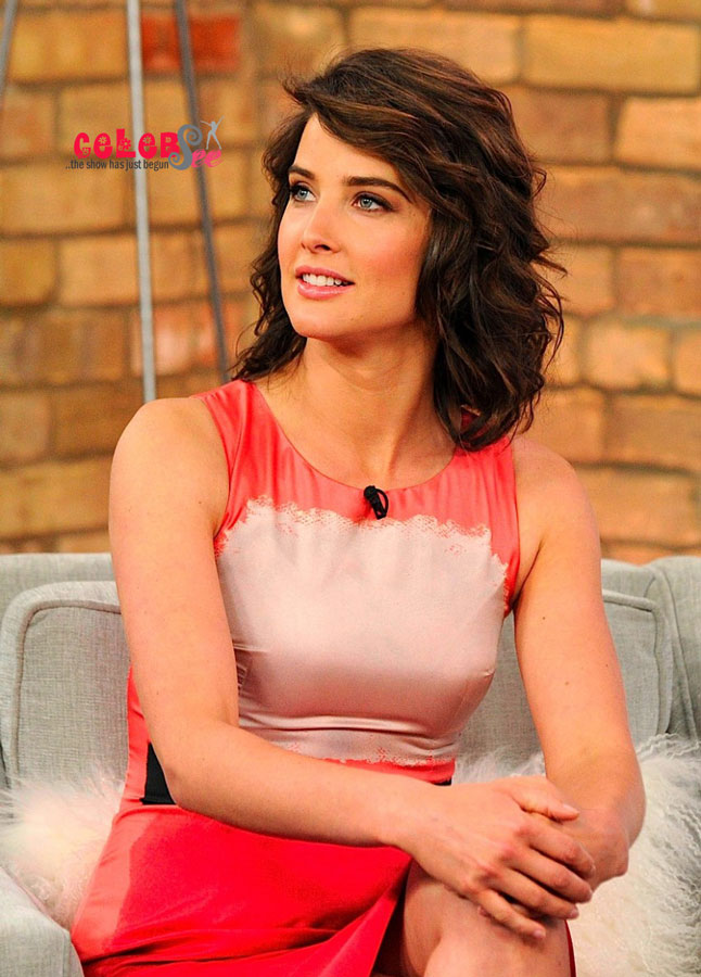 cobie smulders sexy pictures