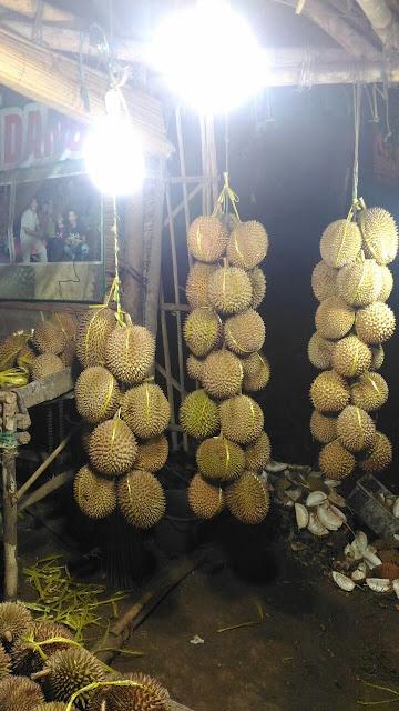 kopi untuk kesehatan ras durian