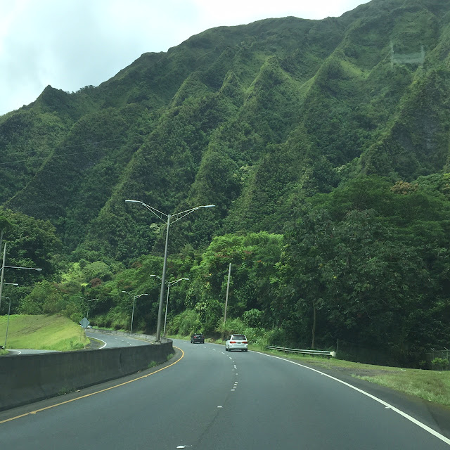 Hawaii | House Homemade