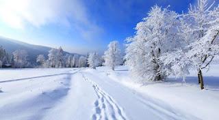 تفسير رؤية الشتاء في المنام بالتفصيل
