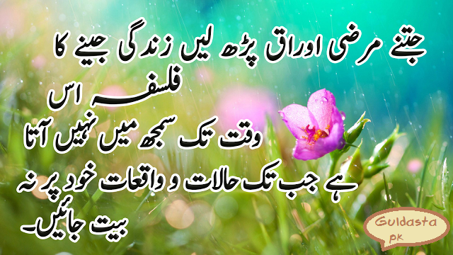 karamat e auliya allah, karamat awliya allah in urdu, allah ke wali ki karamat, auliya karam ki karamat, aulia allah ki pehchan, Download Aulia Allah Ki Pehchan Pdf Book, Buzurgon Ki Kuch Batain (javaherat say qeemti), Aqwal-e-Zareen: beautiful quotes hazrat ali in urdu, golden words Iqtabasat, Urdu Hay, Poetry Qoutes, Urdu Poetry, Mera Islaam, Quotic Side, Urdu Random, Darwashoun Ke Baten