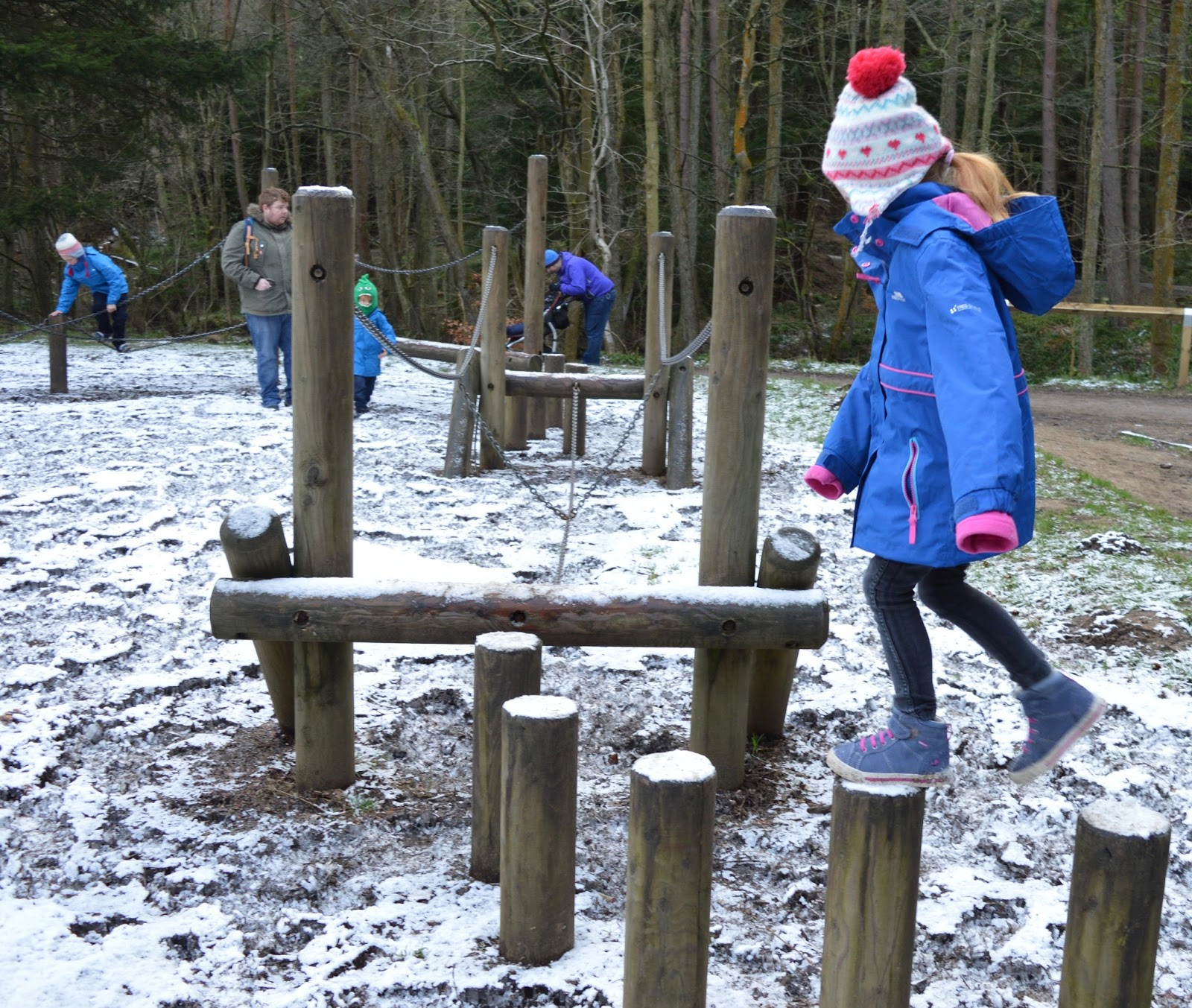 10 of the best family walks in North East England with a cafe and play park nearby - Hamsterley Forest