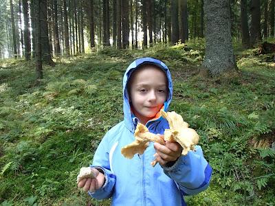 grzyby 2016, grzyby w październiku, grzyby na Orawie, ostatni ciepły dzień, bacówka, zwierzęta na bacówce, oscypki, żętyca, bundz