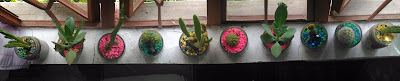 Panorama Mode using the back or rear camera of Asus Zenfone Selfie cactus succulent window lining up