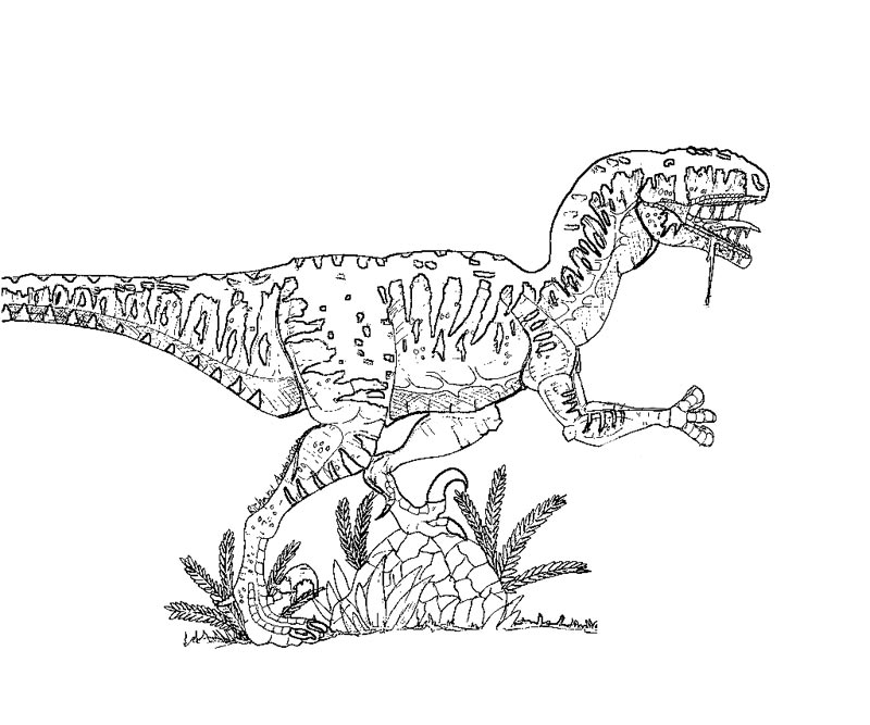 velociraptor jurassic park coloring pages - photo#19