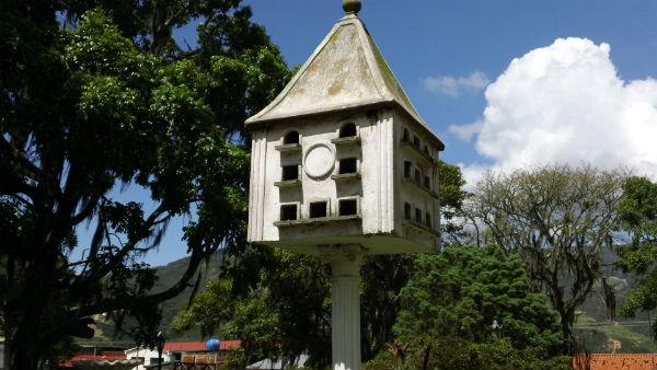 casa de palomas