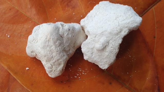 manfaat, khasiat, manfaat kapur sirih, khasiat kapur sirih, manfaat kapur sirih  untuk makan, manfaat kapur sirih untuk ketiak, manfaat kapur sirih untuk jerawat, manfaat kapur sirih untuk wajah
