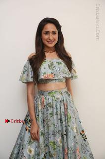 Actress Pragya Jaiswal Stills in Floral Dress at turodu Interview  0118.JPG
