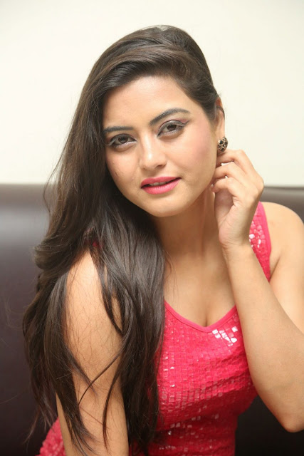 Shipra Gaur At Pisachi 2 Success Meet Event Gallery