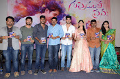 Guppedantha Prema Audio Launch Photos-thumbnail-19