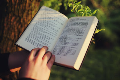 Buat Duit Dengan Menulis Novel Dan Sajak