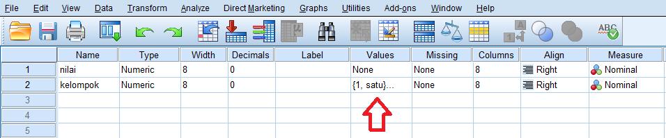 input data di data view spss statistik