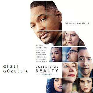 Gizli Güzellik (2016)