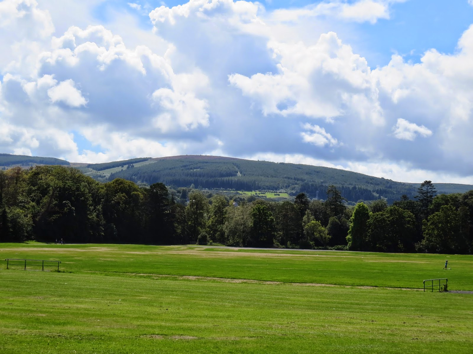 Wicklow Mountains Viewed from Marlay Park