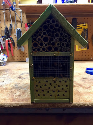 a bee house for some natives