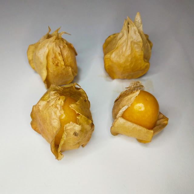 Miechunka peruwiańska, miechunka jadalna (Physalis peruviana) - owoc. Jak wygląda, jak smakuje, jak jeść. Wartości odżywcze, witaminy. Nasiona, siew, roślina, uprawa.