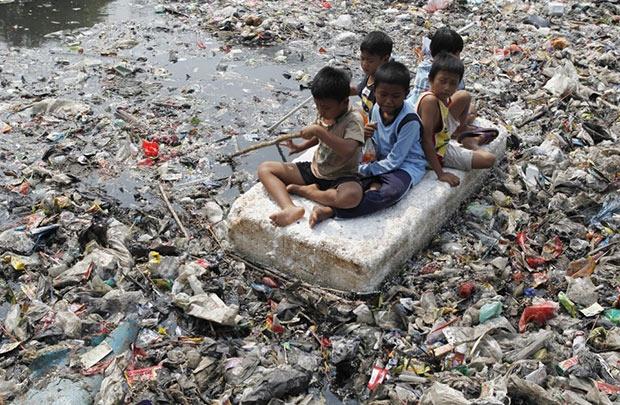 Cuộc sống trên môi trường rác thải