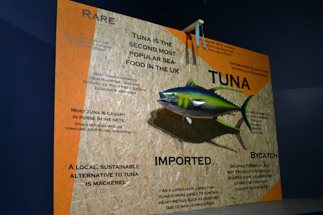 A display of tuna fishing facts at the National Marine Aquarium in Plymouth