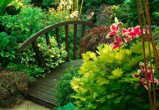 WowEscape Seasonal Garden Escape