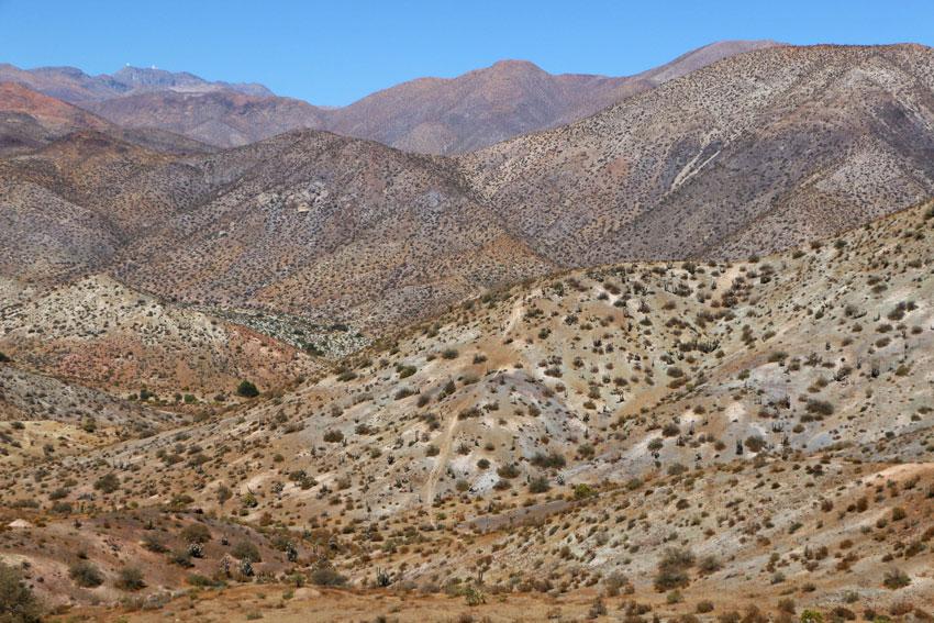paysage-vallee-limari-chili