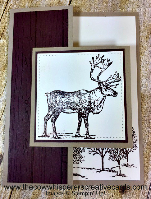 Card, Nature Sings, Masculine Card, Lovely as a Tree, Projects