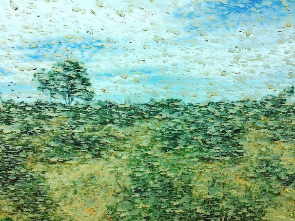 20 Pictures Prove That 'Accidental' Art Can Be Astonishing - Mud Spatters On The Car Window Created An Accidental Monet On My Friend's Outback Road Trip