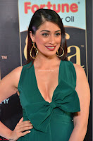 Laxmi Rai in a Deep neck Beautiful Green Gown Cute Actress Laxmi Rai ~  017.JPG
