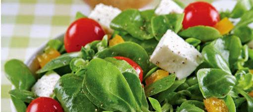 mozerallali-semizotu-salatasi